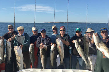 On a sunny clear sky day, nine men each hold up the striped bass they caught.