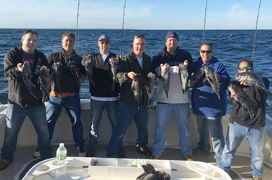 On a sunny, blue sky day, 7 men stand on the boat and each hold up 2 sea bass.