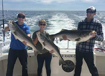 With the sunny blue sky and ocean behind them, a man, young woman and young man, all wearing sunglasses, each hold up striped bass.