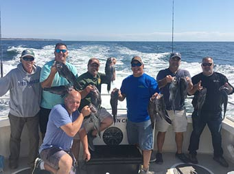 On a sunny day, seven men smile and each hold up the sea bass they caught