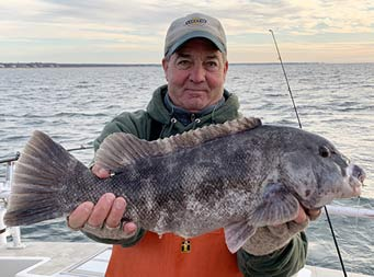 On a chilly, cloudy fall day, with the sun peeking through, a man holds out a tautog (blackfish) with both hands for the camera.