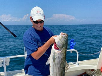 On a sunny day, a man wearing a hat and sunglasses, looks down as he holds up a striped bass with one hand .